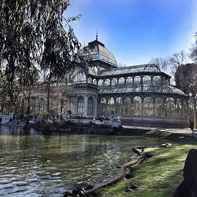 Palacio de Cristal 🇪🇸✨ #madrid #españa #palaciodecristal #parqueretiro #architecture