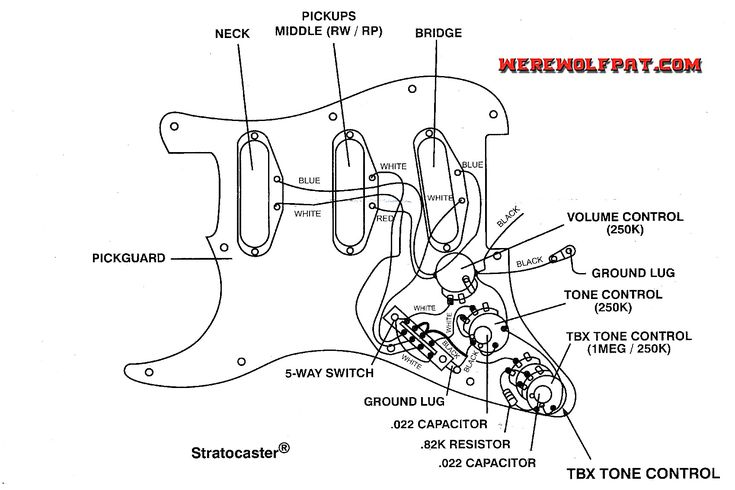 Tbx Wiring Diagram Diagrams Schematics And Fender