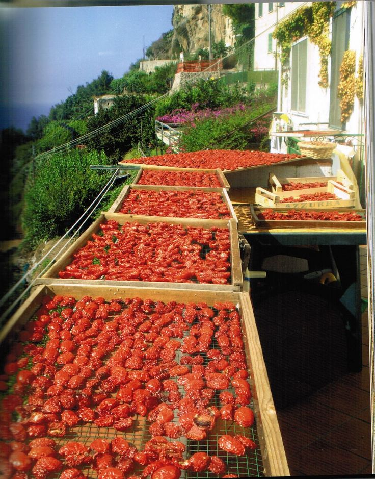 Mama Agata - Ravello, Italy (Italian Restaurant and Cooking School) Would be so fun to take a cooking class in Italy!