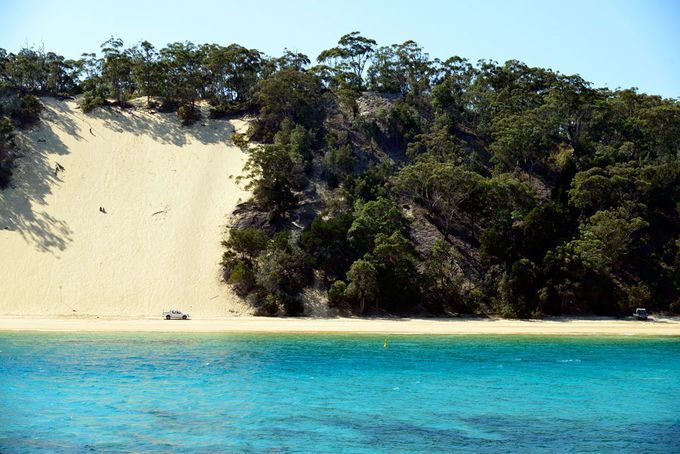 Discover Brisbane's Islands   Must do Brisbane