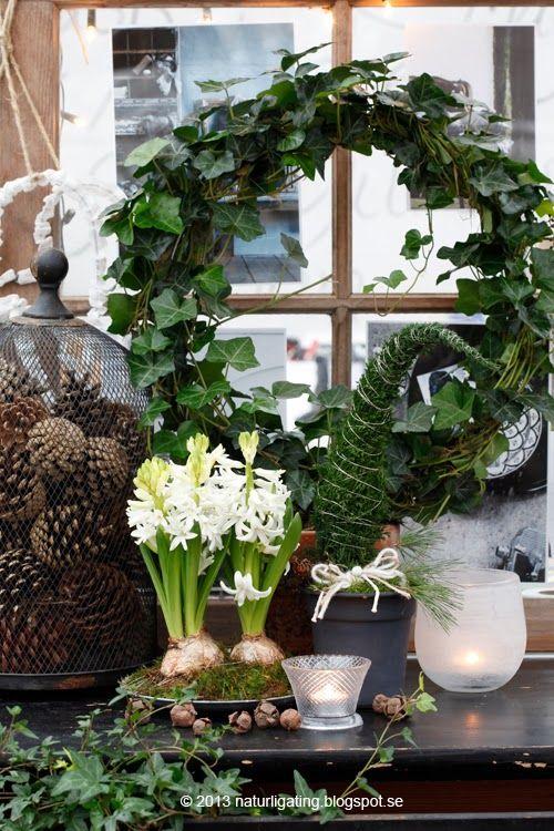 Natural Tingsgarden Blog