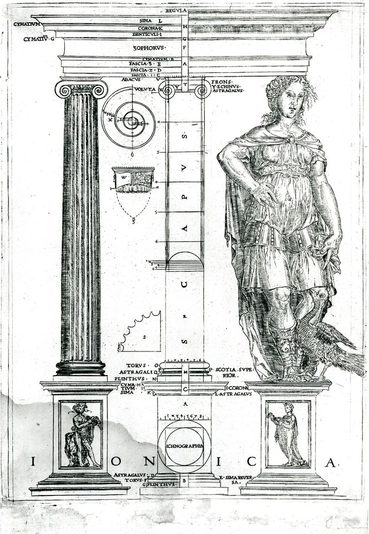John Shute, The First and Chiefe Groundes of Architecture (London, 1563); Ionic Order. From: http://inha.revues.org/3396