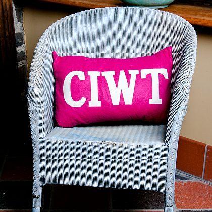 Ciwt Cushion