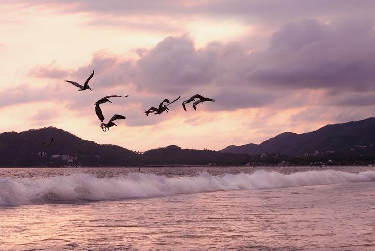 Las #playas de #Manzanillo en #México son ideales para disfrutar las #vacaciones #blog #enjoy #trip #ofertas #turismo