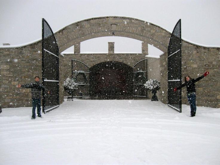 Megalomaniacs Winery