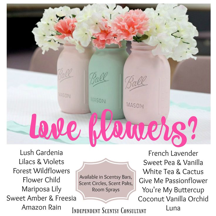 2063 Best Images About Independent Scentsy Consultant On