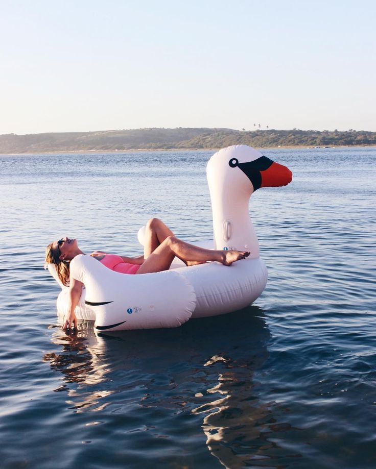 Swanning in Mozambique (@juliefarrell_)