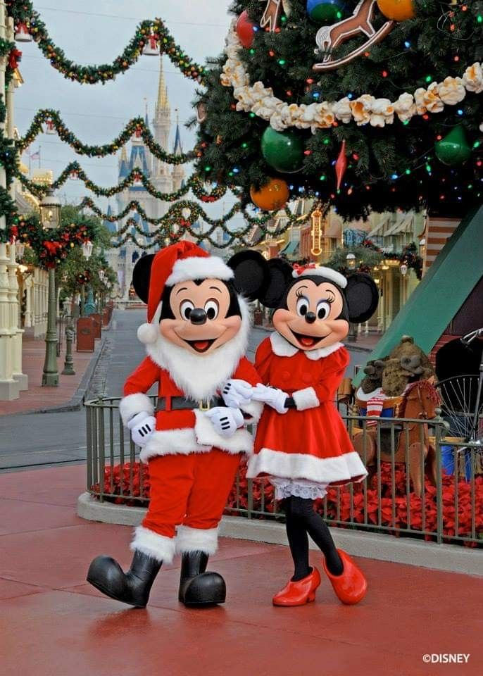 Pin By Crystal Mascioli On Disney Face Fur Characters In 2020 Disney Face Characters Disney Christmas Disney Parks
