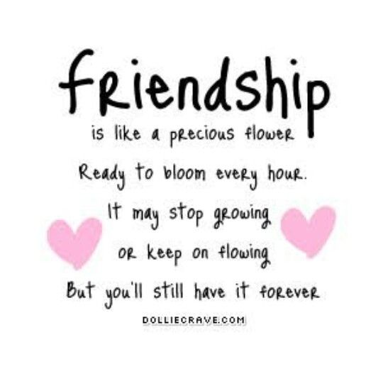 Cute Quotes About Friendship Gorgeous 29 Best Cute Friendship Quotesimages On Pinterest  Beat Friends