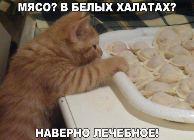 Смешные картинки из сети на 17.10.16