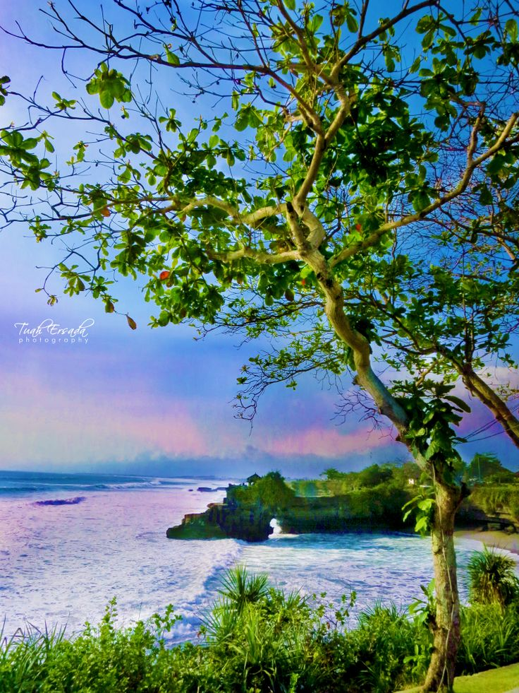 #travel #landscape #photography #nature #tree #grass #leaf #blue #green #sky #beach #land #rock #bali #island #indonesia #tuahErsada