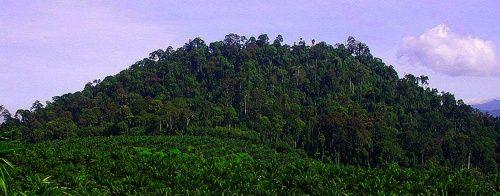 Bombalai Hill, Tawau Hills Park