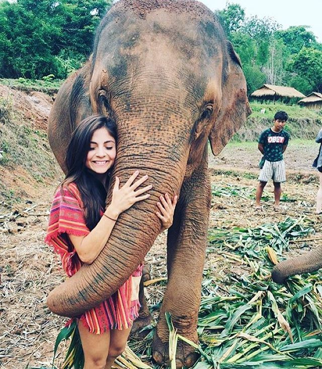 "-  Chiang Mai, Thailand @jenkvieira - ""Oh so much love. Best bonding experience ❤️ #Backpackerstory -  Apply on  Facebook.com/backpackerstory for a FEATURE"