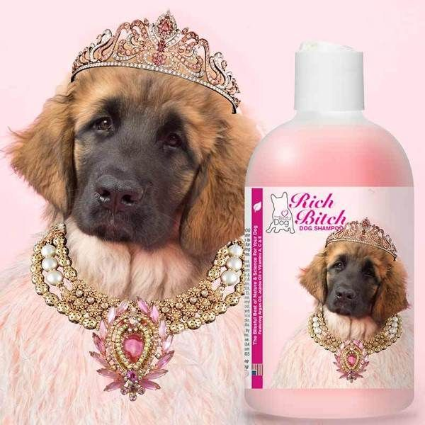 Leonberger Coloring Pages - Worksheet & Coloring Pages