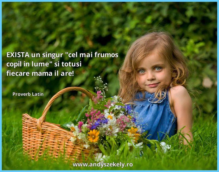 citat despre copii proverb latin