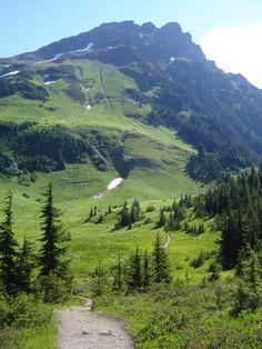 Mt. Cheam near Chilliwack, BC - a hiking trail