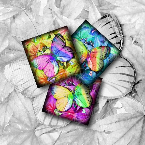 Butterfly Images 1 inch Square Digital Collage Sheet Key