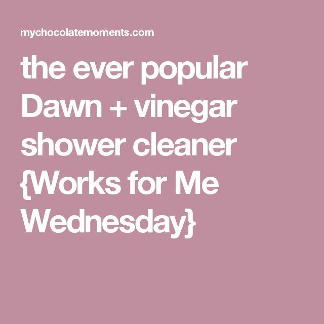 the ever popular Dawn + vinegar shower cleaner {Works for Me Wednesday}
