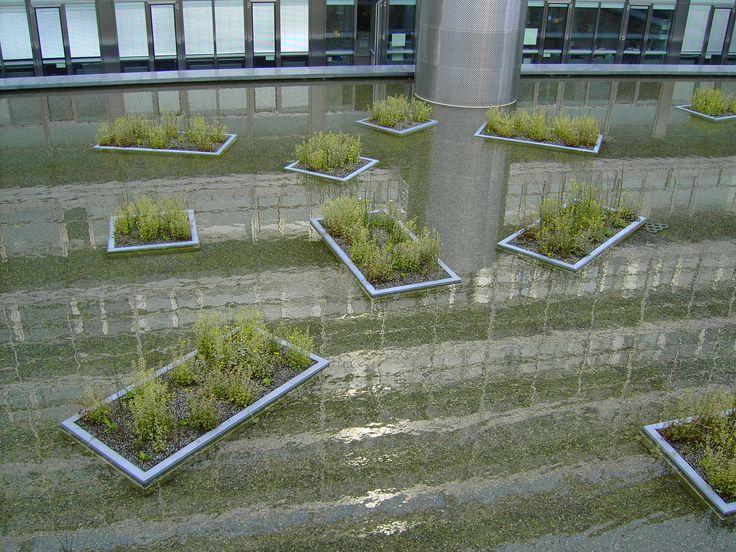 ETH Hönggerberg | Vogt Landschaftsarchitekten