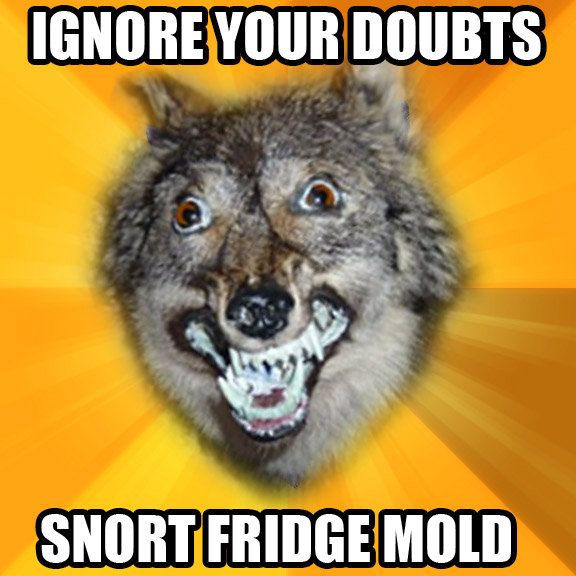 courage wolf meme - Google Search