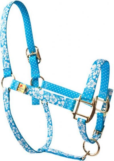 Designer Bridles & Halters Gifts | Red Haute High Fashion Horse Halters | Horses | Furry Partners