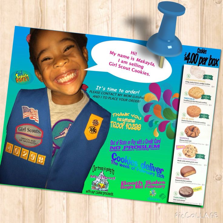 45 best images about girl scout on pinterest girl scouts