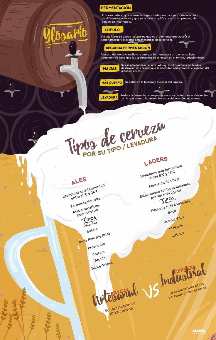 Infografía sobre los tipos de cerveza, en qué se diferencian y su glosario. Y...¡Qué rica es la cerveza!