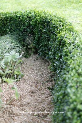 Ein Schweizer Garten: Das tapfere Schneiderlein...