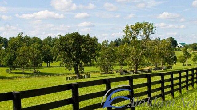 تفسير حلم المزرعة الخضراء في المنام المزرعة المزرعة الخضراء المزرعة الخضراء للعزباء المزرعة في الحلم Golf Courses Field