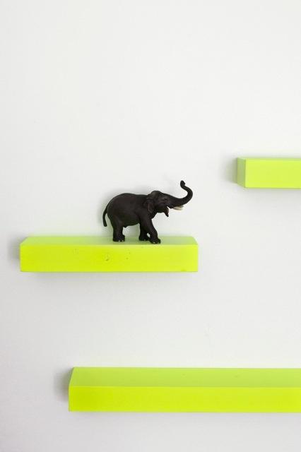 fluro shelves