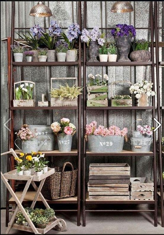 #Flowers on the shelves