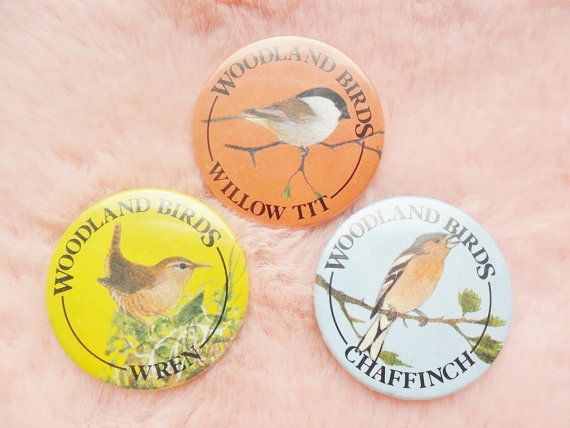 Vintage Retro Wildlife Nature Conservation English England British Woodland Bird Ornithology Wren Chaffinch Willow Tit Jay Pin Badge