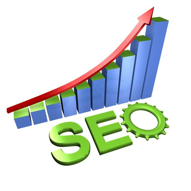 Search Rank India which is counted amongst the leading Digital Marketing Company in India helps the business organization to get good visibility in the search engine result pages by offering top class search engine optimization services.