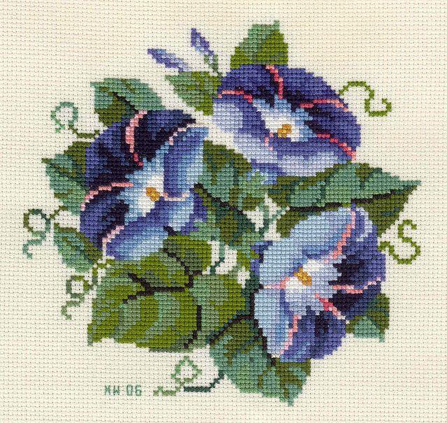 morning glory cross stitch pattern | Morning Glory.