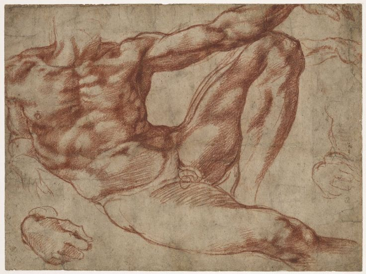 RT @britishmuseum: Michelangelo died #onthisday in 1564. This is a study for the figure of Adam from the ceiling of the Sistine Chapel https://t.co/jrzVCIIs24