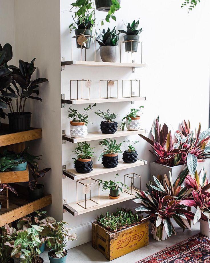 houseplants plant shelfie indoor plants plants decor plant decor ideas home  decor interior style plant corner nordic style sca… | Plants, Plant decor,  Garden living