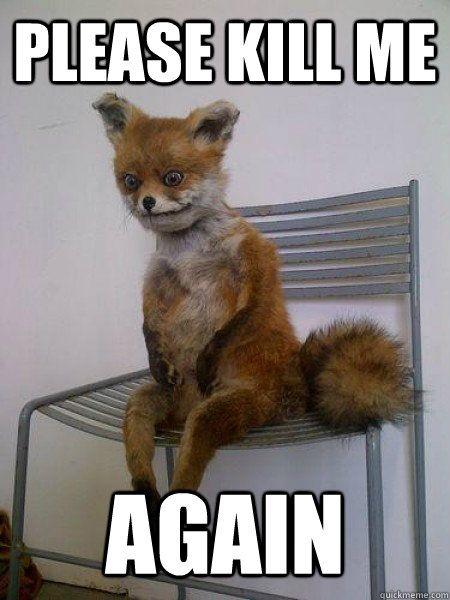 please kill me again taxidermy the fox freaky