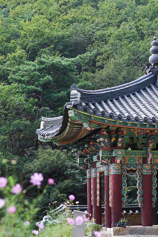 sinheungsa, gangwon province, south korea | buddhist temple