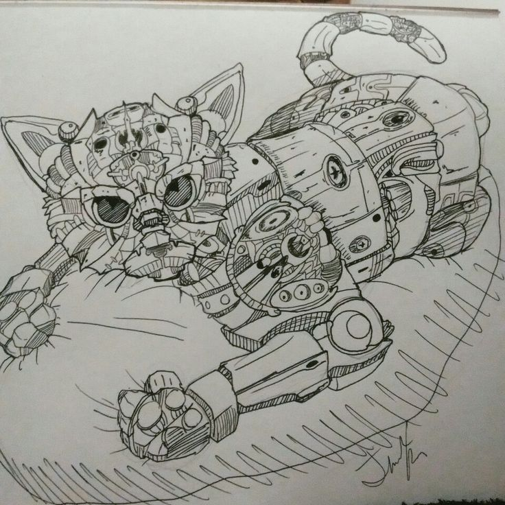#cat #robot