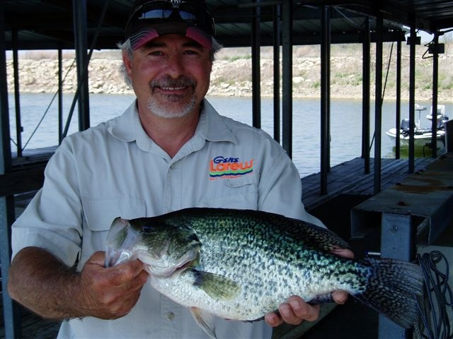 3 4 lb crappie caught at truman lake warsaw mo for Truman lake fishing report