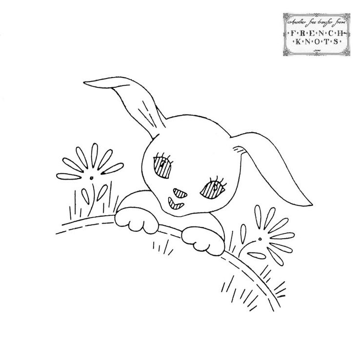 bunny_daisies.jpg (800×778)