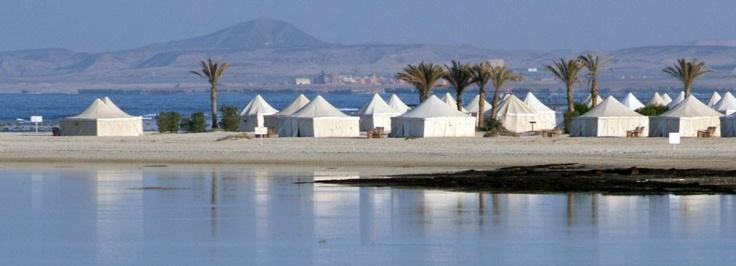 Red Sea Diving Safari - Marsa Alam - Egypt