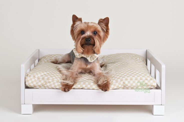 The best sleeping place for your dog. Teddy loves it so much!