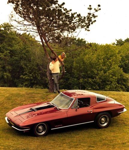 17 Best Images About 1967 Corvette Stingray On Pinterest