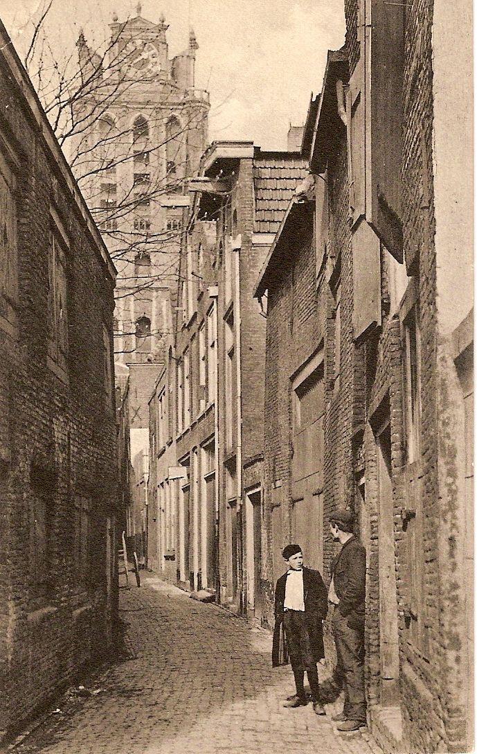 """De Molenstraat werd vernoemd naar een huis op de hoek van de Voorstraat """"de Vergulde Molen"""". Een poortje met een steen waarop een molenrad en het jaartal 1590 stond er nog lang. Eerst werd het Molenstraatje """"Suikerstraat"""" genoemd. De huidige Suikerstraat was aanvankelijk de vesting. Toen het gebied tot aan de stadsgracht bij de stad Dordrecht werd getrokken was de vesting niet meer nodig en werd het een gewone straat: Dit werd de Suikerstraat en de oude Suikerstraat werd Molenstraat."""