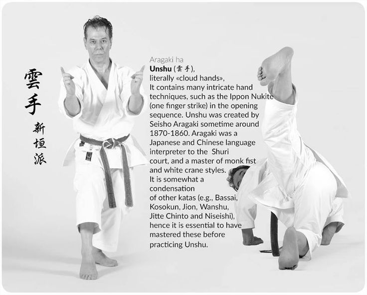 "Pose from ""Unshu"" kata."