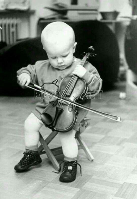 Прикольные картинки с виолончелью, открытки