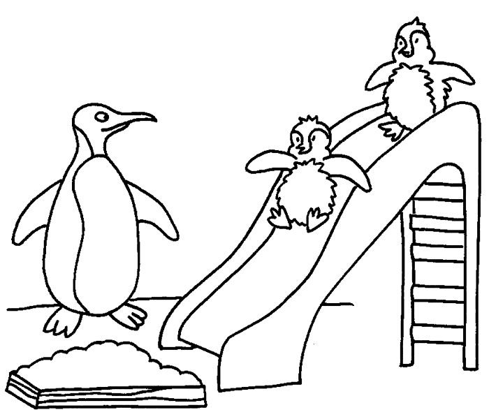Babies Penguin In A Garden Coloring Page