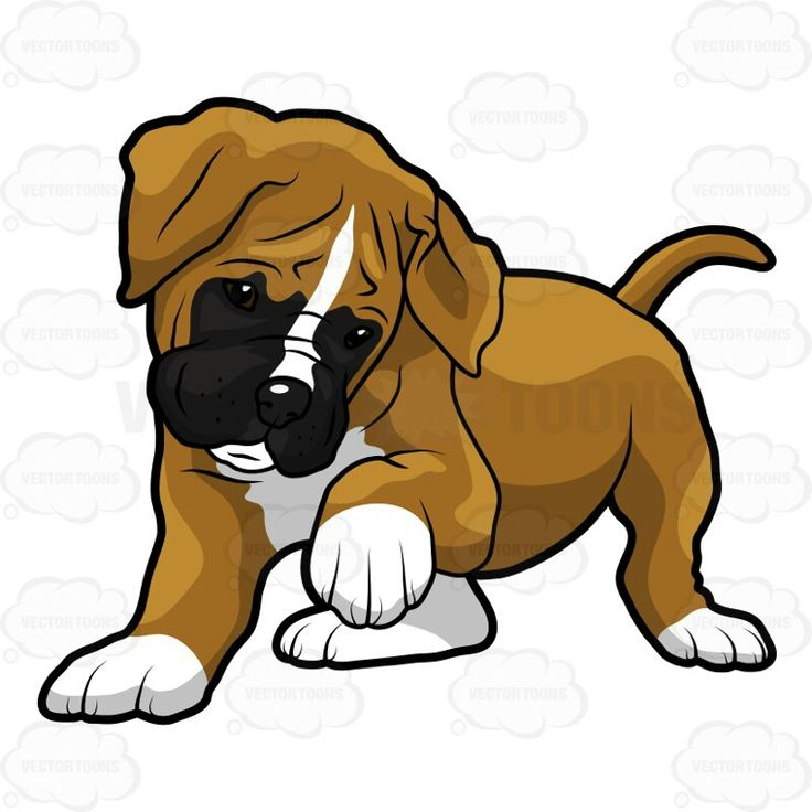 54 best clipart images on pinterest | draw, boxer puppies and animals