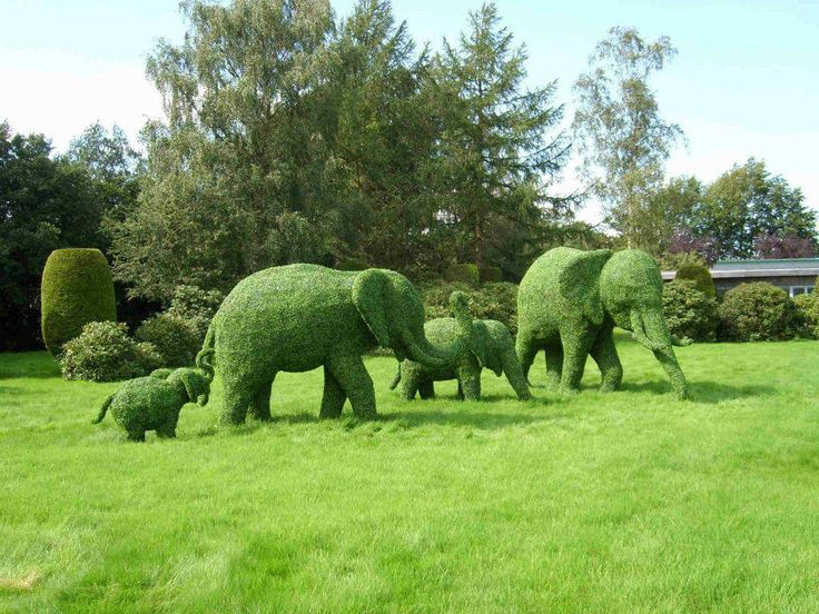 Topiary Animals Green Animal Garden Topiary Art A Plant Like